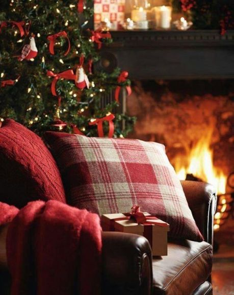 cozy christmas read.jpg