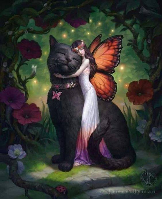 fairy and kitty